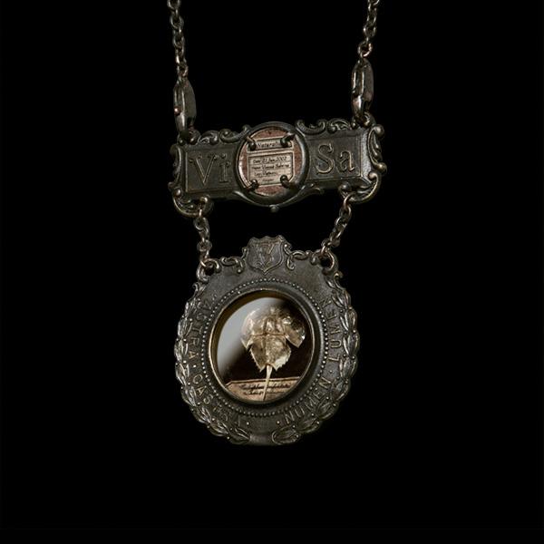 V. Sabrina,サブリナ,真鍮,アクセサリー,アンティーク,標本,封入,ネックレス,ブローチ,骨格標本,骨格,カブトエビ