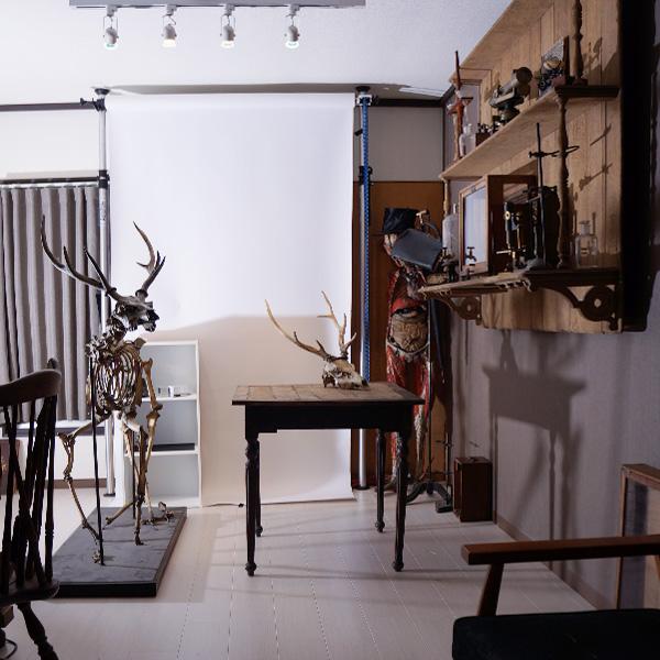 撮影,スタジオ,撮影スタジオ,アンティーク,V. Sabrina,渋谷,恵比寿,広尾,標本,剥製